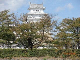 菩提寺 墓参り帰路の白鷺城.jpg